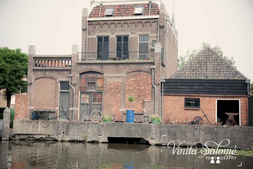 The Bee's Tour With Vinita- The Netherlands
